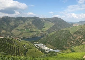 Porto & Douro Valley Food and Wine Short Break Tour
