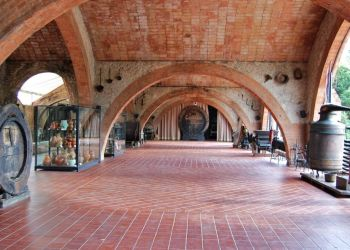 Cava Winery Tour from Barcelona
