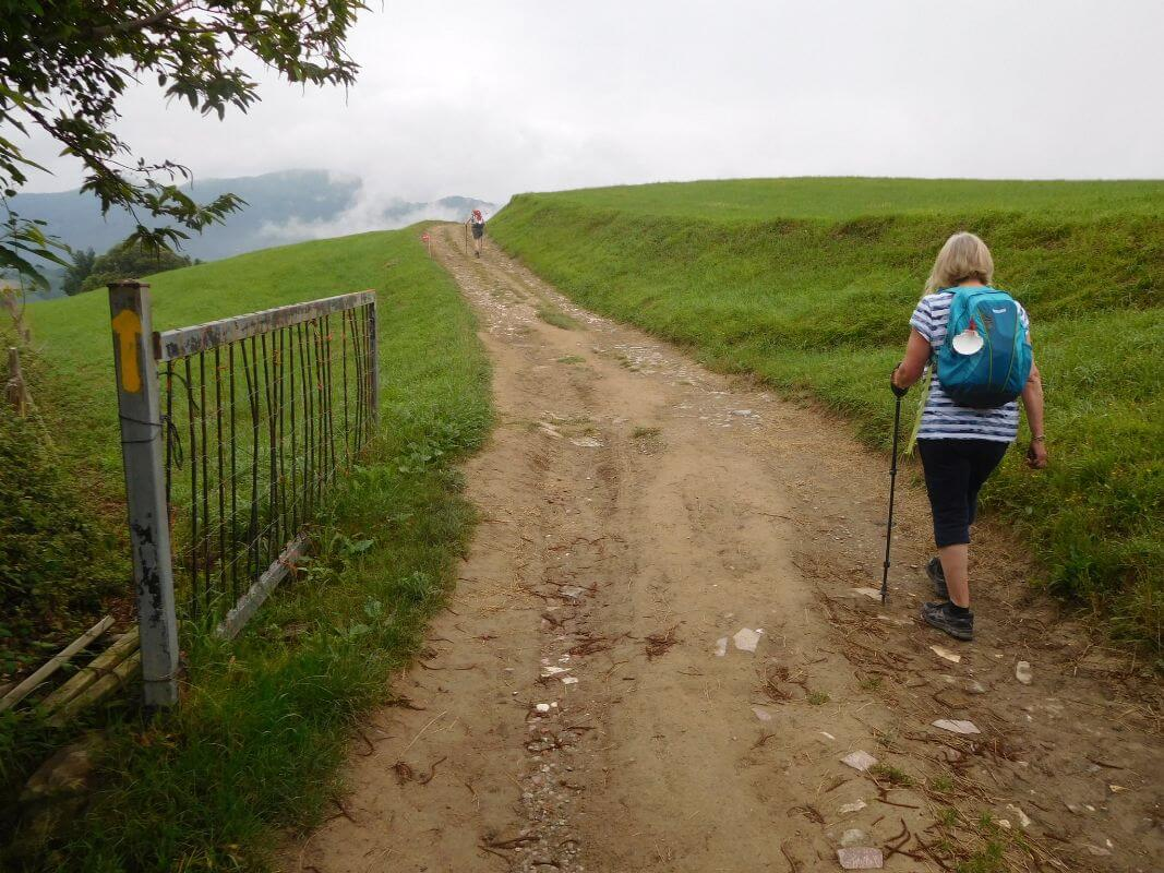 12 Recommended Camino de Santiago Tours 2021 Holy Year - 1. Camino Santiago Tour: French Way in Galicia
