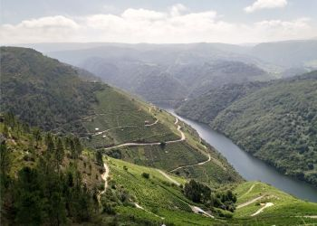 Short Break Wine Country & River Trails of Southern Galicia