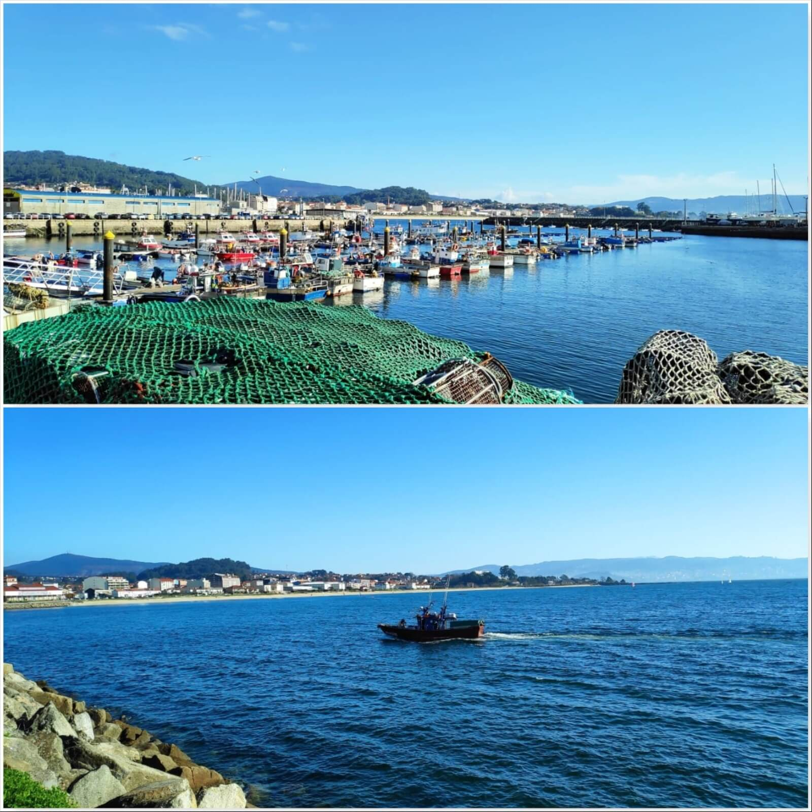 Learn on our Galician Cooking Class in Galicia - Vigo, Spain