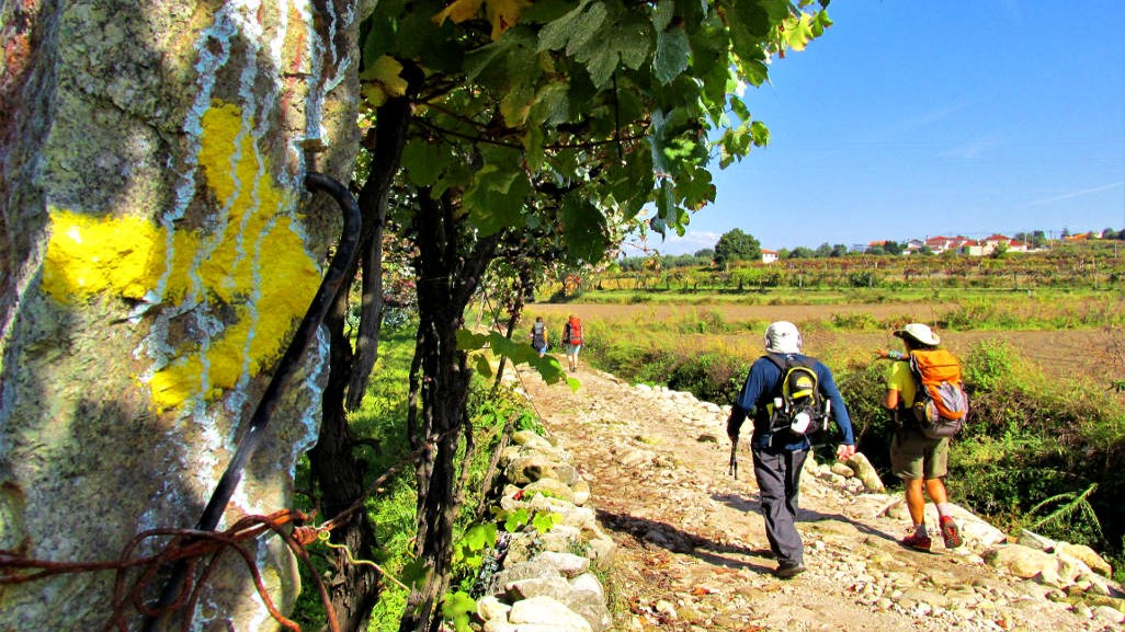 12 Recommended Camino de Santiago Tours 2021 Holy Year - 9. Self-Guided Walking Tour of the Portuguese Camino from Porto