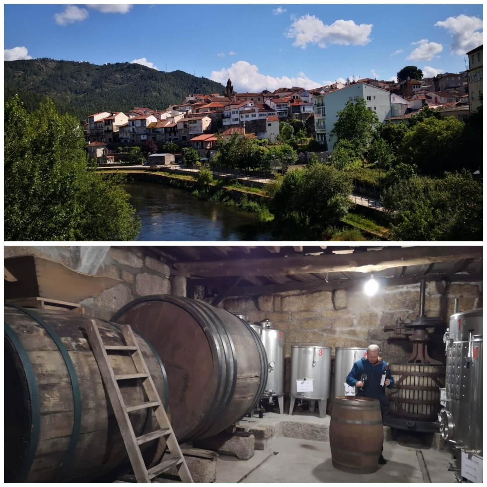 12 Recommended Camino de Santiago Tours 2021 Holy Year - 4. Camino do Vino in Ribeiro Wine Country