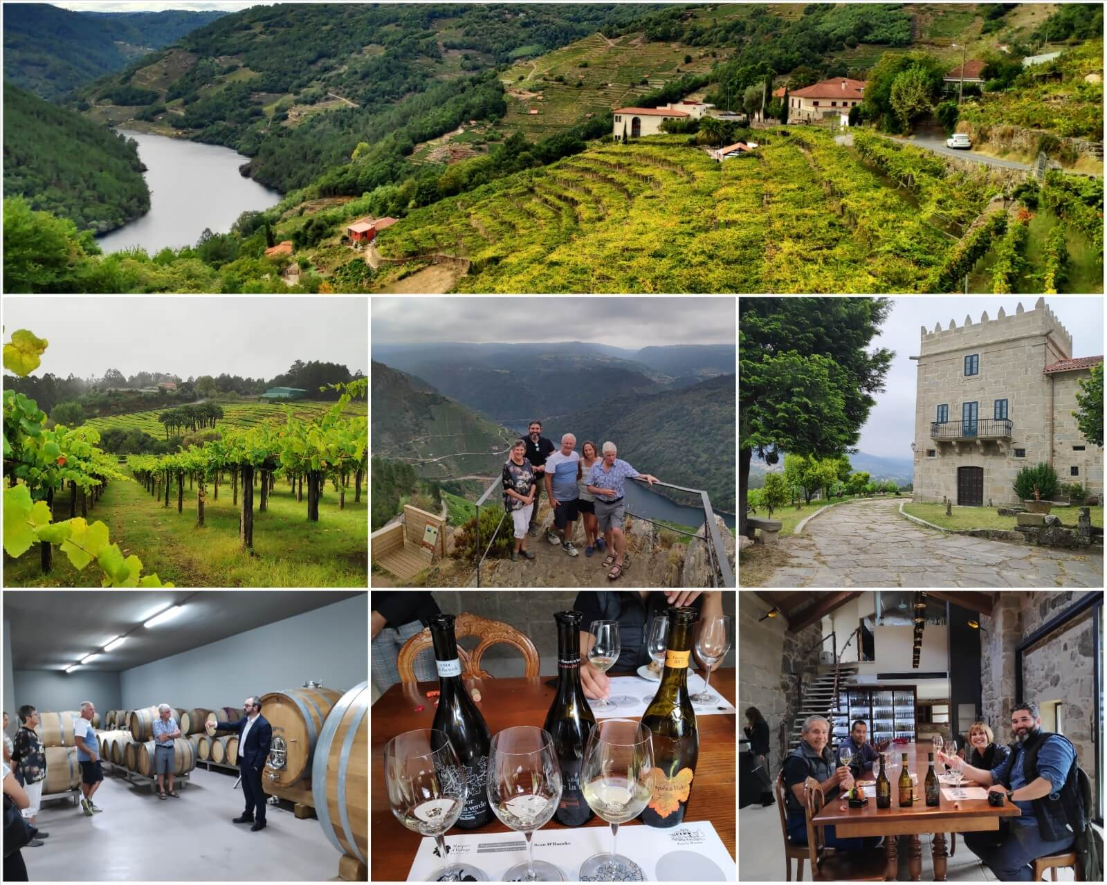 What to see and do in Northern Spain: top 6 ideas - 6. Wine tourism in Northern Spain
