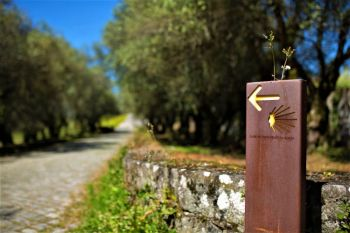 Walk Independently the last 100km of the Portuguese Coastal Camino