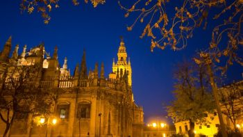 Seville Santa Cruz Quarter by Night and Live Flamenco Show with Dinner