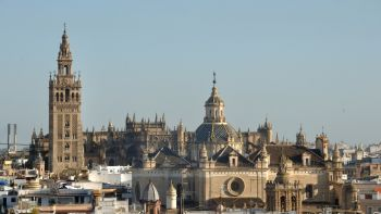 Seville´s Cathedral, Giralda Tower, Alcazar Palace and Old Quarter Walking tour with transportation from Cadiz