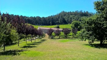 Self-driven Paradores and Wineries Tour on the Rias Baixas of Galicia
