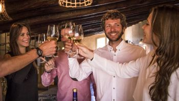 Historic Tour of Toledo & Winery Experience from Madrid