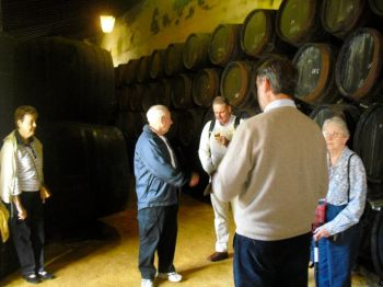 Discovering Sherry in Jerez de la Frontera from Seville