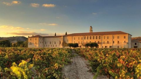 Excursion VIP de vino a Ribera del Duero desde Madrid
