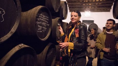 Jerez de la Frontera Historic Quarter and Sherry Winery Tour