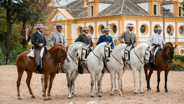 Jerez de la Frontera Sherry winery tour and The Dancing Andalucian Horse Show from Cadiz