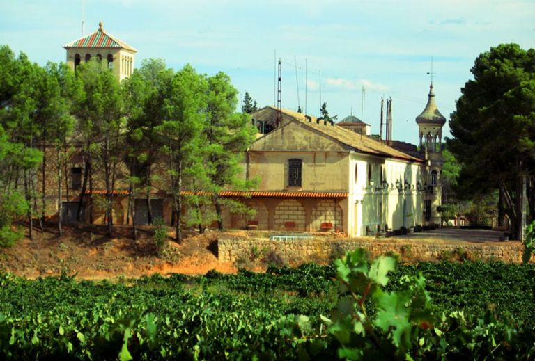 Wine Tour from Valencia to Utiel-Requena Wine Region