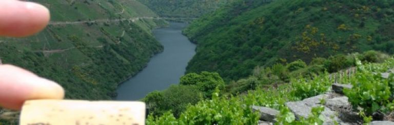 Ribeira Sacra Wine Tours – A Sacred Land of Wines