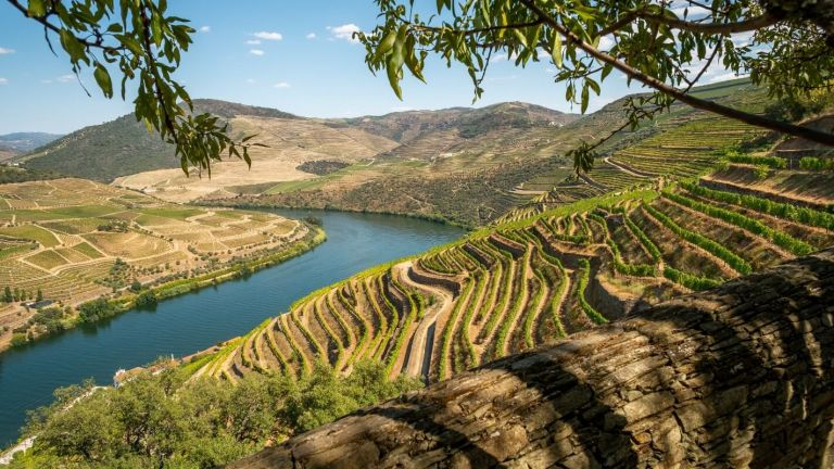 Douro River Cruise Short-Break from Porto