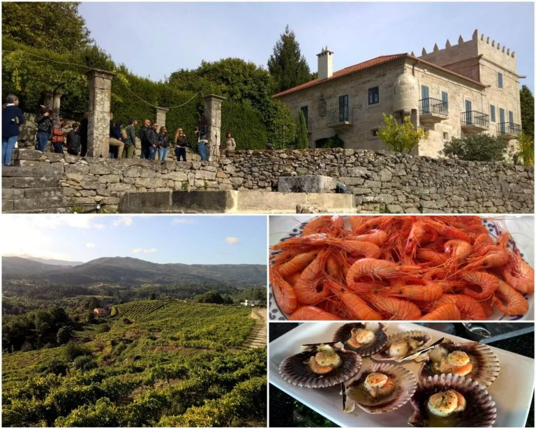 Food and Wine Tours in Spain: a unique experience