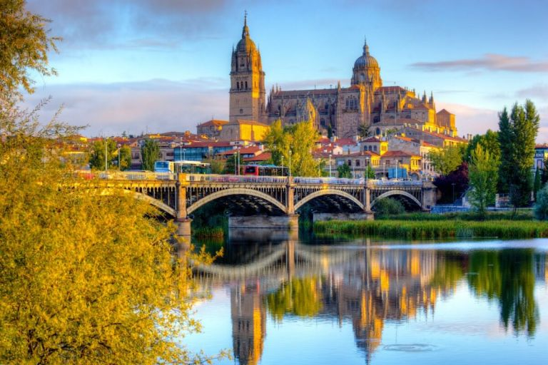 Salamanca Historic Walking Tour with transportation from Madrid