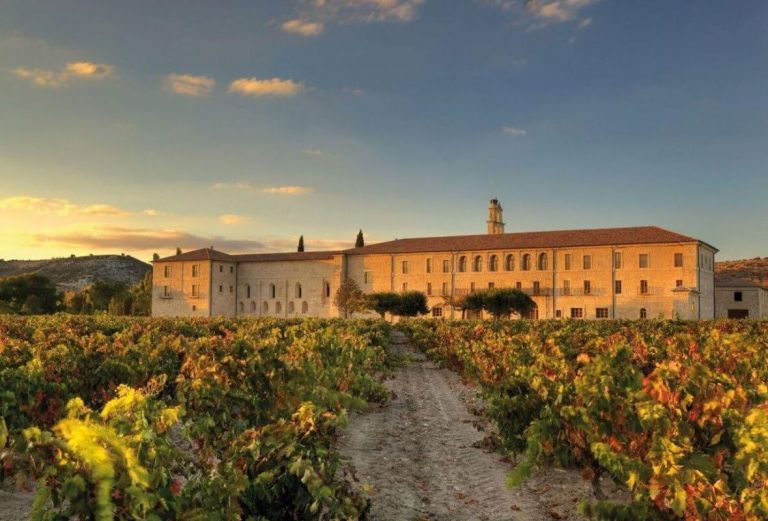 VIP Wine Excursion to Ribera del Duero from Madrid