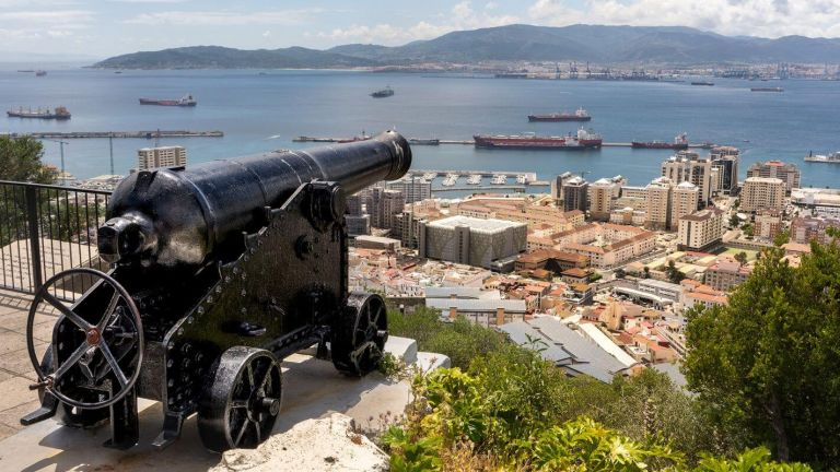 Full Day Small Group Excursion to Gibraltar, Puerto Banus & Marbella  from Costa del Sol