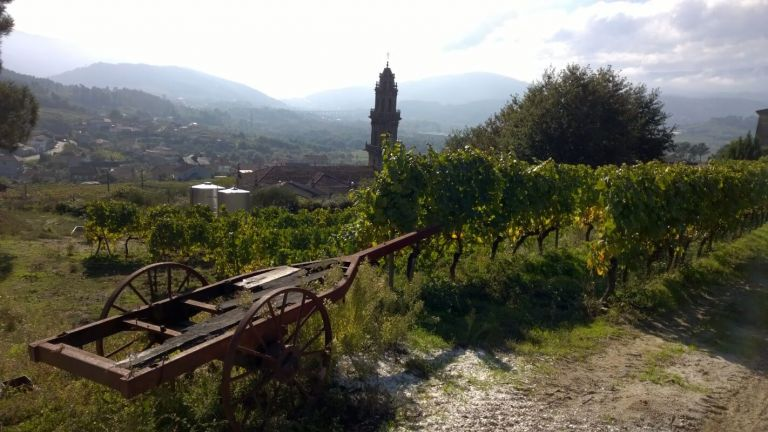 Wine Tour of the Ribeiro Wine Region from Santiago de Compostela
