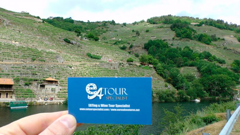 Douro River Cruise from Regua to Pinhao for Port Wine Tasting and back to Regua