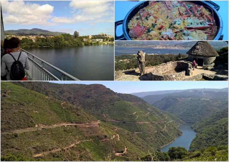 Tailor-made Wine and Walking Tour with Portuguese Coastal Camino in Galicia